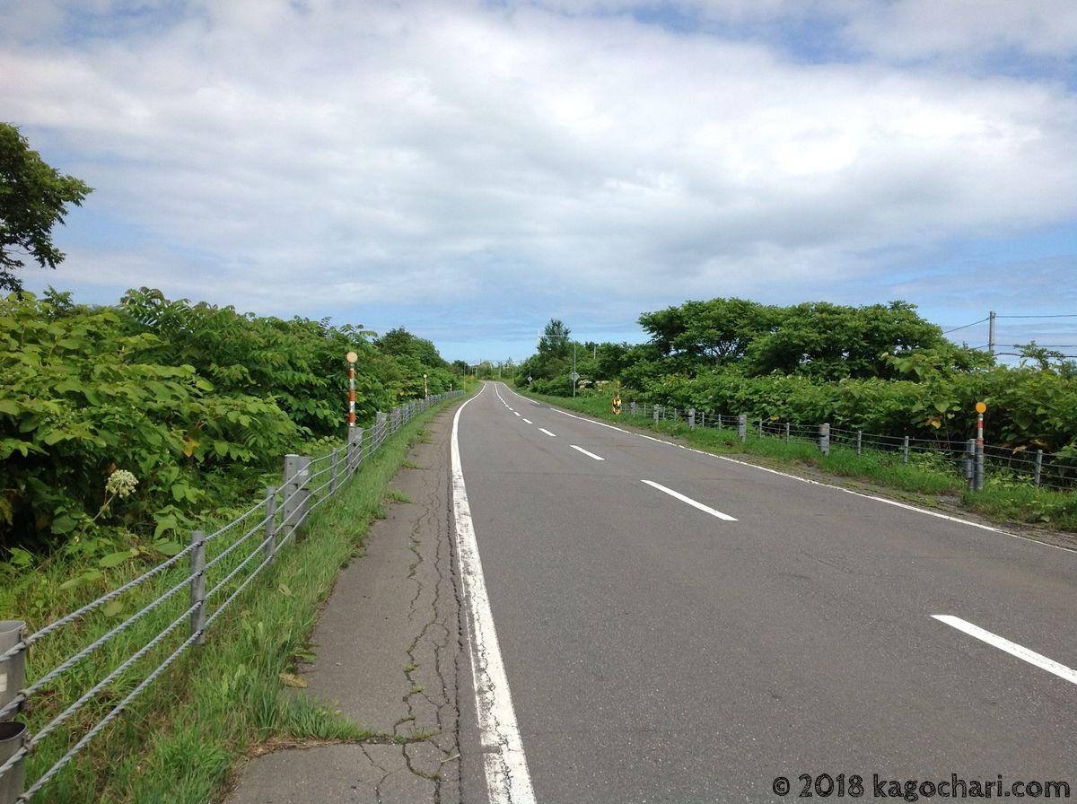 大樹町の海岸線への道