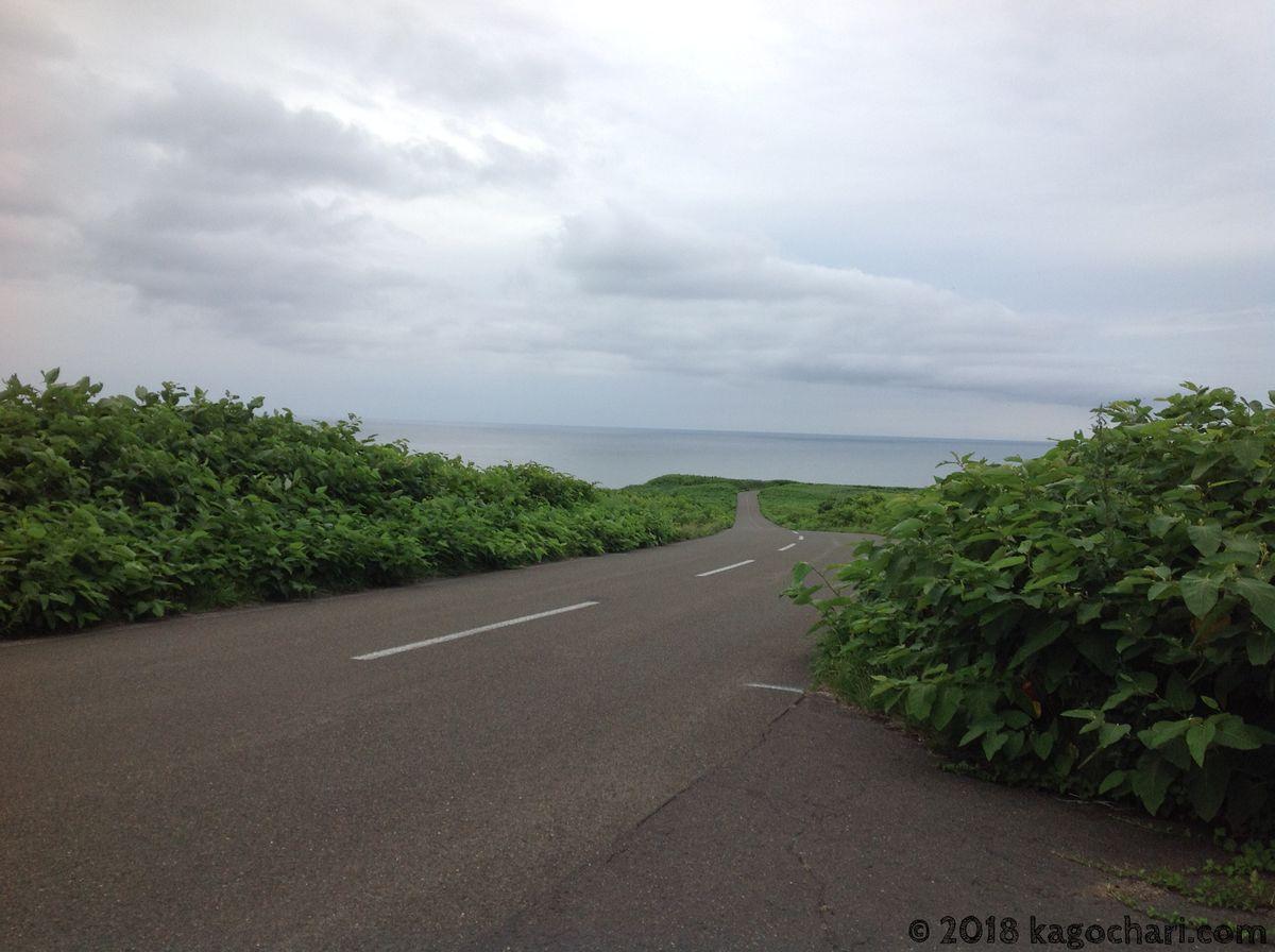能取岬付近の道路