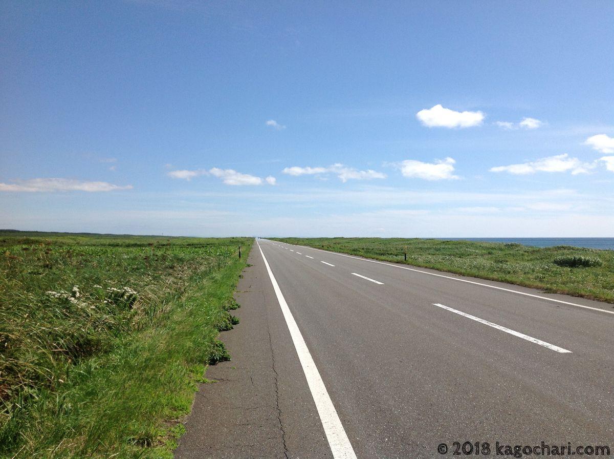 オロロンラインの道