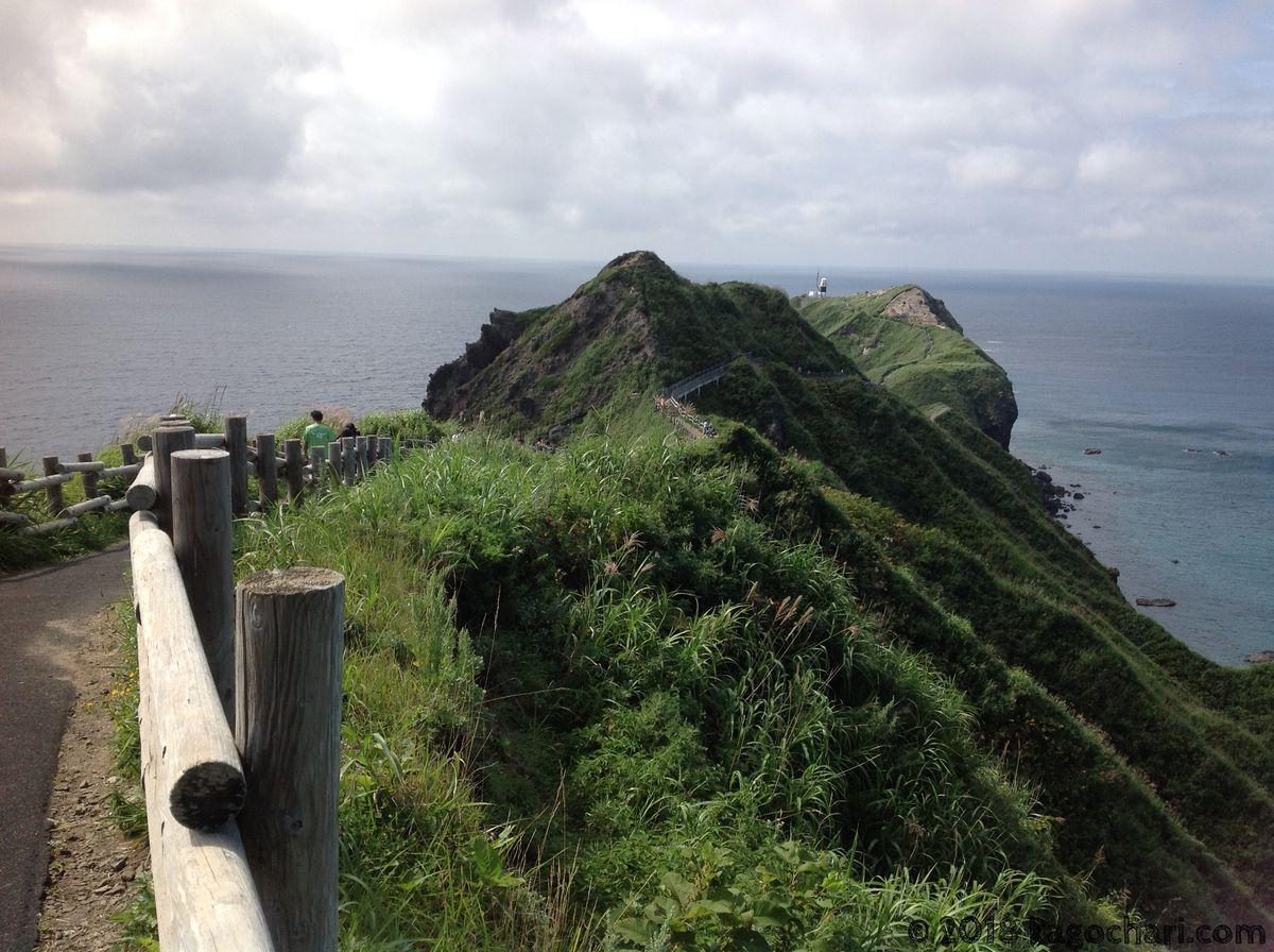 神威岬の自然-01