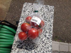 道の駅しりうちでミニトマトを購入