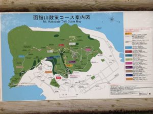 函館山-登山コース案内